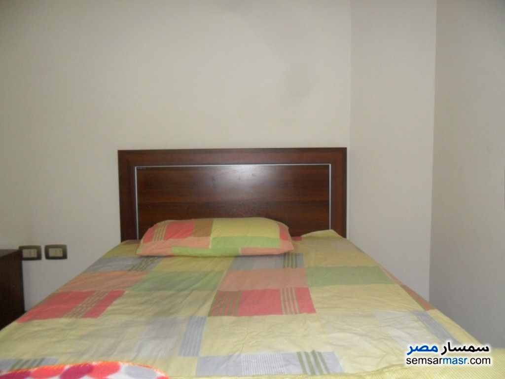 Photo 9 - Apartment 2 bedrooms 3 baths 160 sqm extra super lux For Rent Dokki Giza
