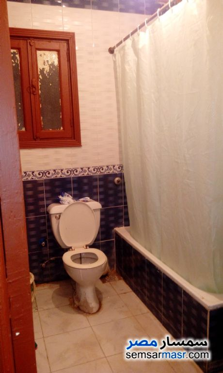 Photo 11 - Apartment 2 bedrooms 1 bath 120 sqm super lux For Rent Miami Alexandira