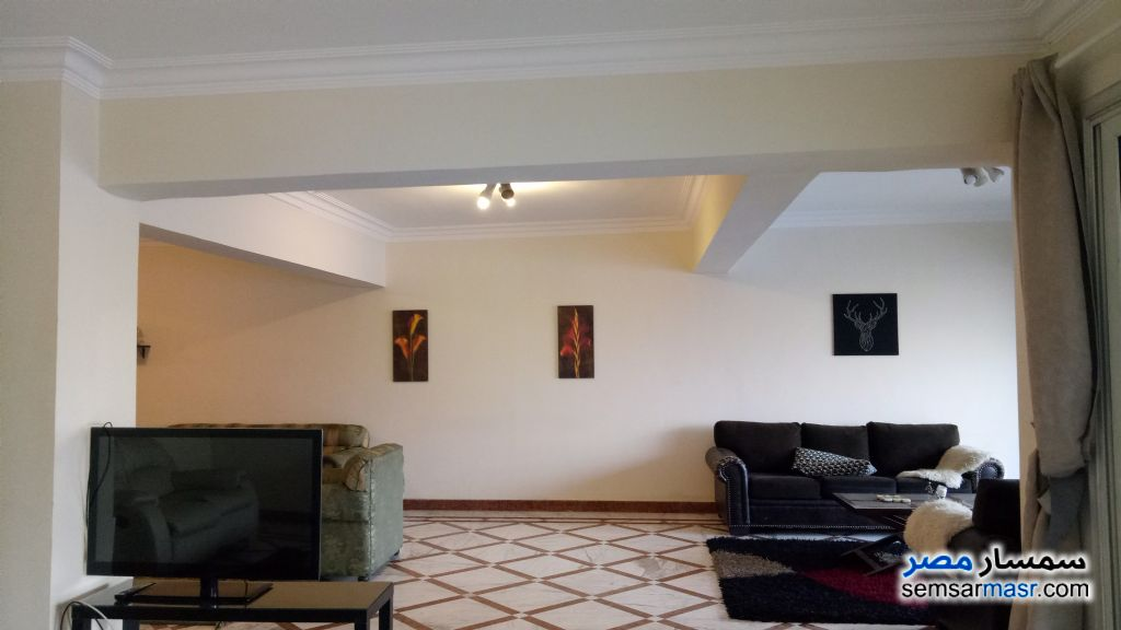 Photo 3 - Apartment 4 bedrooms 4 baths 400 sqm super lux For Sale Dokki Giza