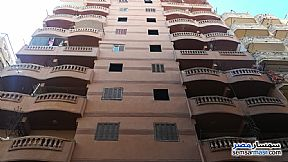 Ad Photo: Apartment 2 bedrooms 1 bath 50 sqm in Agami  Alexandira