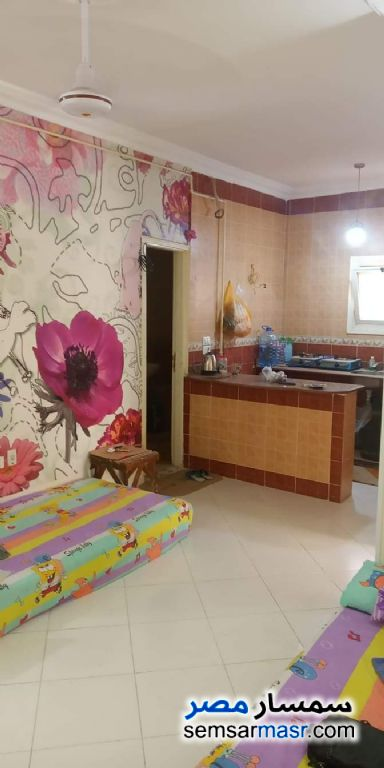Ad Photo: Apartment 2 bedrooms 1 bath 75 sqm super lux in Red Sea