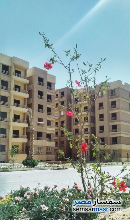 Photo 6 - Apartment 3 bedrooms 1 bath 80 sqm semi finished For Sale October Gardens 6th of October