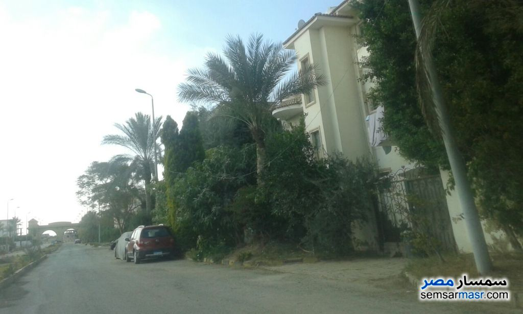 Photo 7 - Apartment 3 bedrooms 3 baths 182 sqm semi finished For Sale Shorouk City Cairo