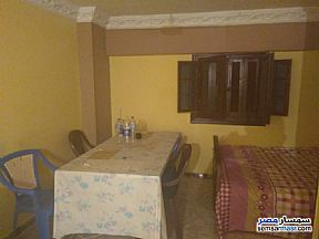 Ad Photo: Apartment 1 bedroom 1 bath 65 sqm in Miami  Alexandira