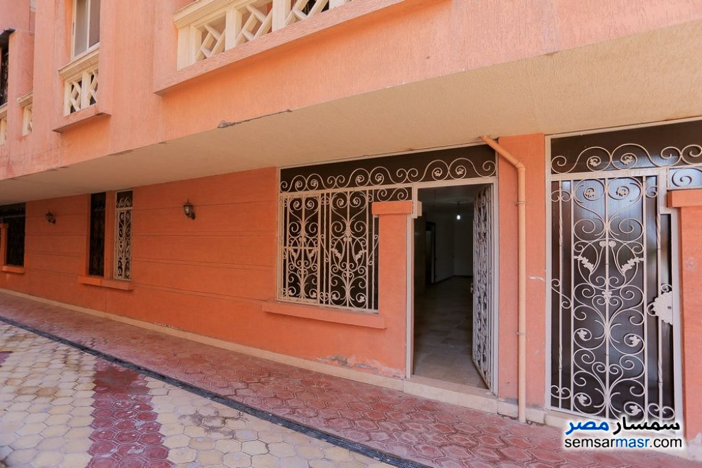 Photo 17 - Apartment 3 bedrooms 1 bath 143 sqm lux For Sale Smoha Alexandira