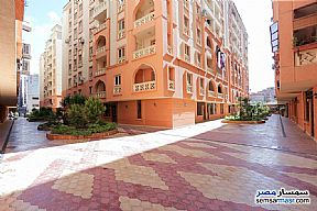 Ad Photo: Apartment 3 bedrooms 1 bath 143 sqm lux in Smoha  Alexandira