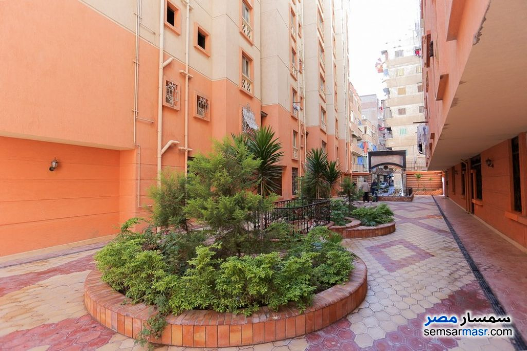 Photo 7 - Apartment 3 bedrooms 1 bath 143 sqm lux For Sale Smoha Alexandira