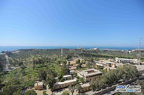 Ad Photo: Apartment 3 bedrooms 2 baths 150 sqm extra super lux in Montazah  Alexandira