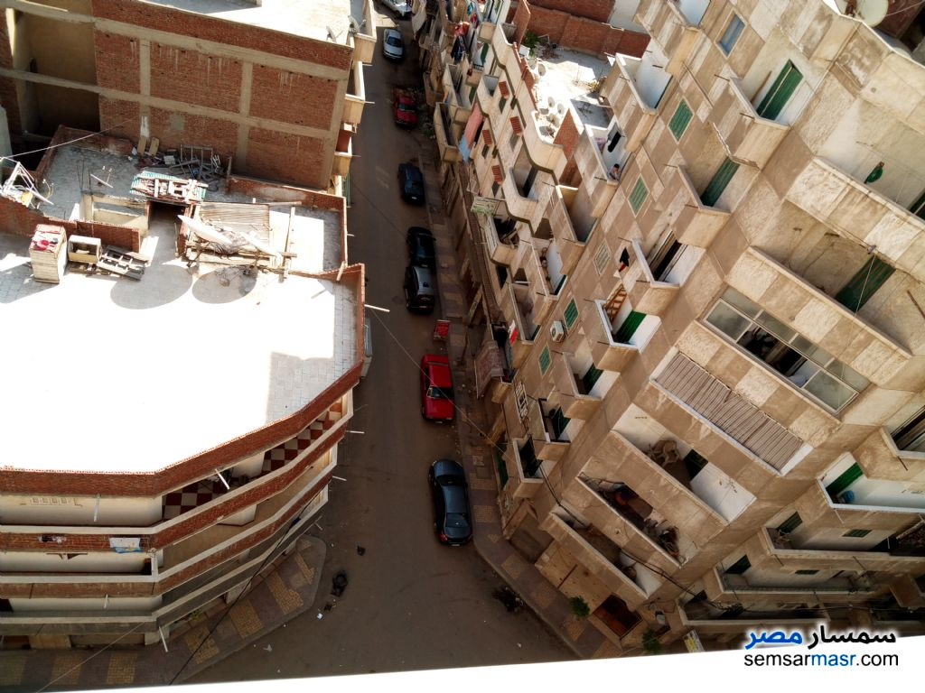 Photo 6 - Apartment 3 bedrooms 1 bath 110 sqm lux For Sale Seyouf Alexandira