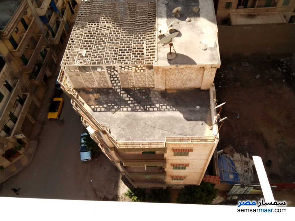 Photo 15 - Apartment 3 bedrooms 1 bath 110 sqm lux For Sale Seyouf Alexandira