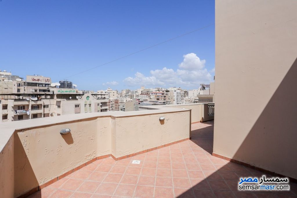 Photo 25 - Apartment 3 bedrooms 3 baths 226 sqm extra super lux For Sale Roshdy Alexandira