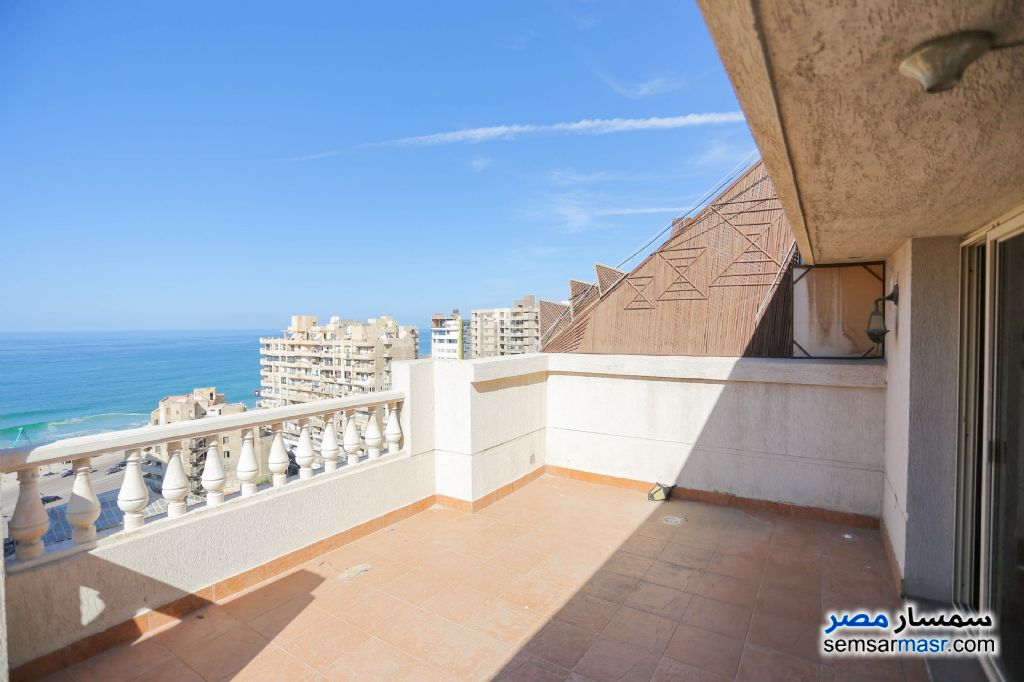 Photo 24 - Apartment 12 bedrooms 6 baths 360 sqm extra super lux For Sale Laurent Alexandira