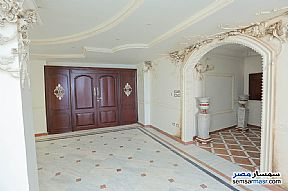Apartment 4 bedrooms 3 baths 430 sqm For Sale Glim Alexandira - 6