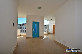 Ad Photo: Apartment 2 bedrooms 1 bath 115 sqm super lux in Red Sea