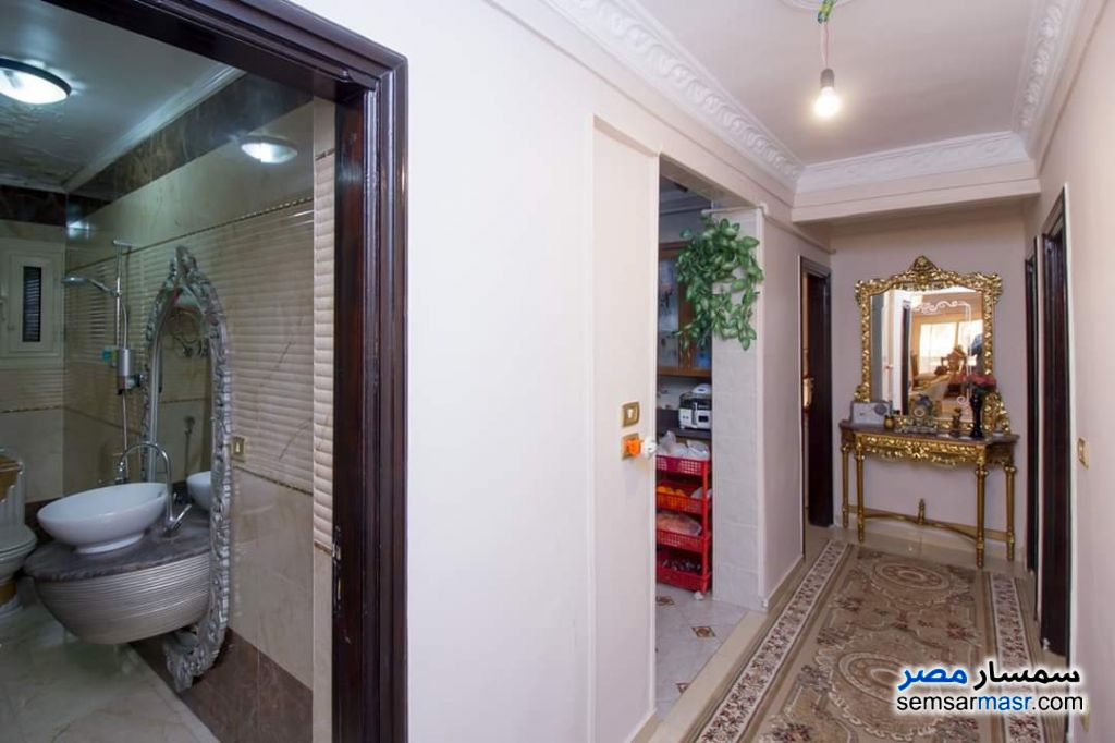 Photo 12 - Apartment 4 bedrooms 3 baths 260 sqm extra super lux For Sale Al Lbrahimiyyah Alexandira
