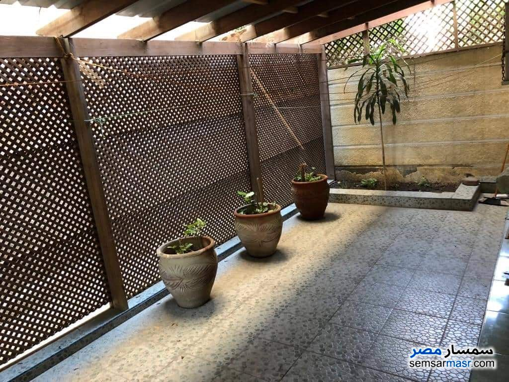 Photo 10 - Apartment 1 bedroom 1 bath 40 sqm lux For Rent Maadi Cairo