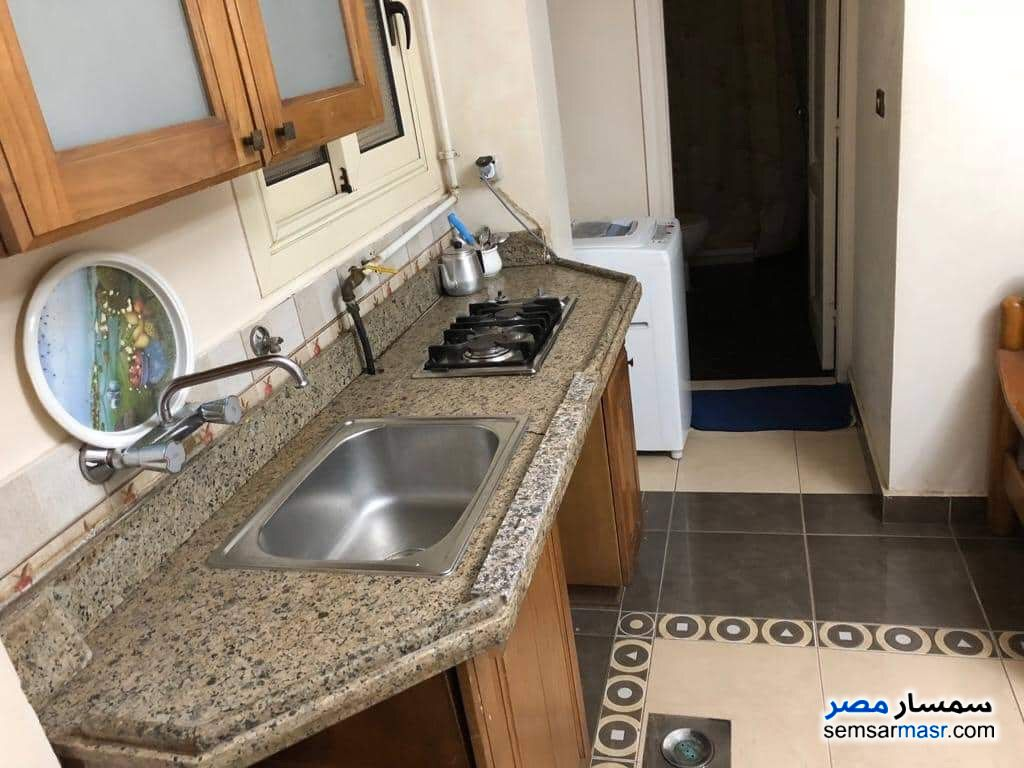 Photo 7 - Apartment 1 bedroom 1 bath 40 sqm lux For Rent Maadi Cairo