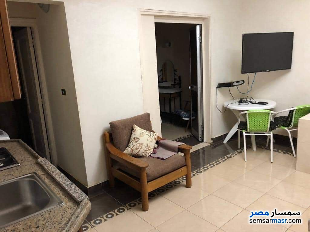 Photo 8 - Apartment 1 bedroom 1 bath 40 sqm lux For Rent Maadi Cairo