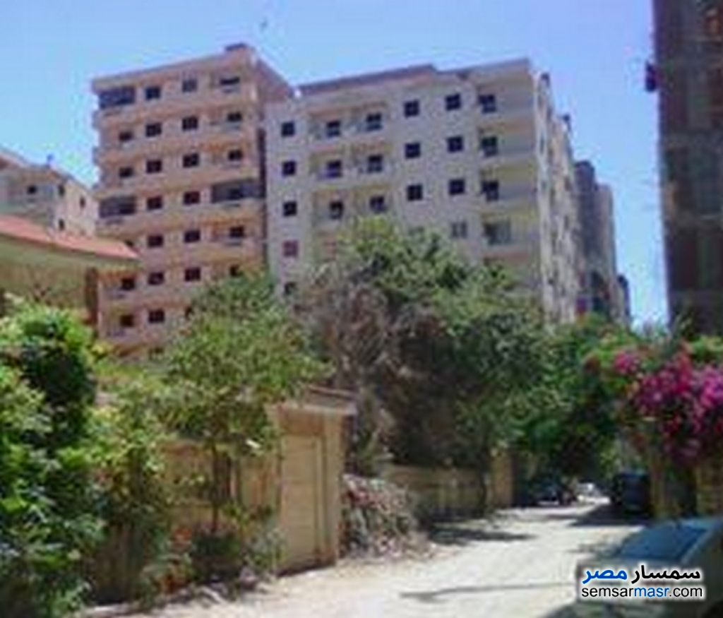 Photo 4 - 3 bedrooms 1 bath 130 sqm without finish For Sale Agami Alexandira