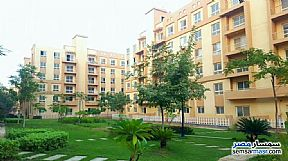 Ad Photo: Apartment 2 bedrooms 1 bath 80 sqm extra super lux in October Gardens  6th of October