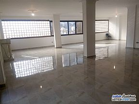 Ad Photo: Apartment 4 bedrooms 3 baths 305 sqm extra super lux in Mohandessin  Giza