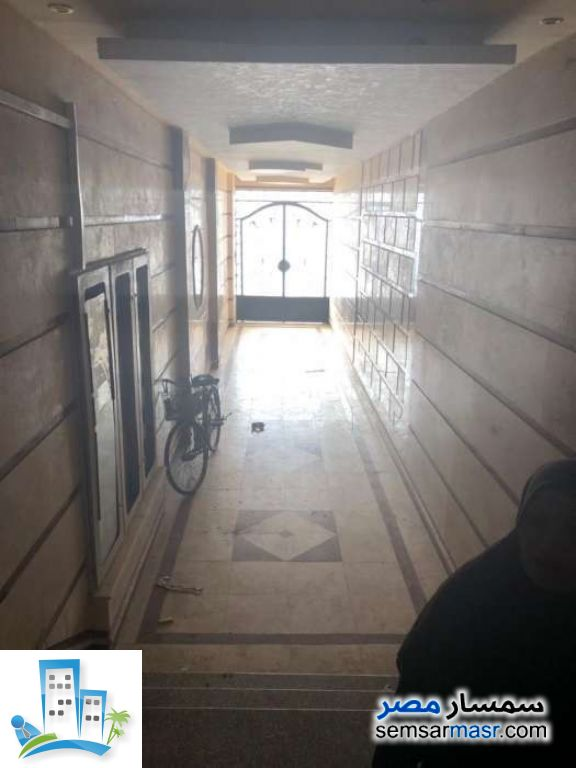 Ad Photo: Apartment 3 bedrooms 1 bath 145 sqm semi finished in Tanta  Gharbiyah