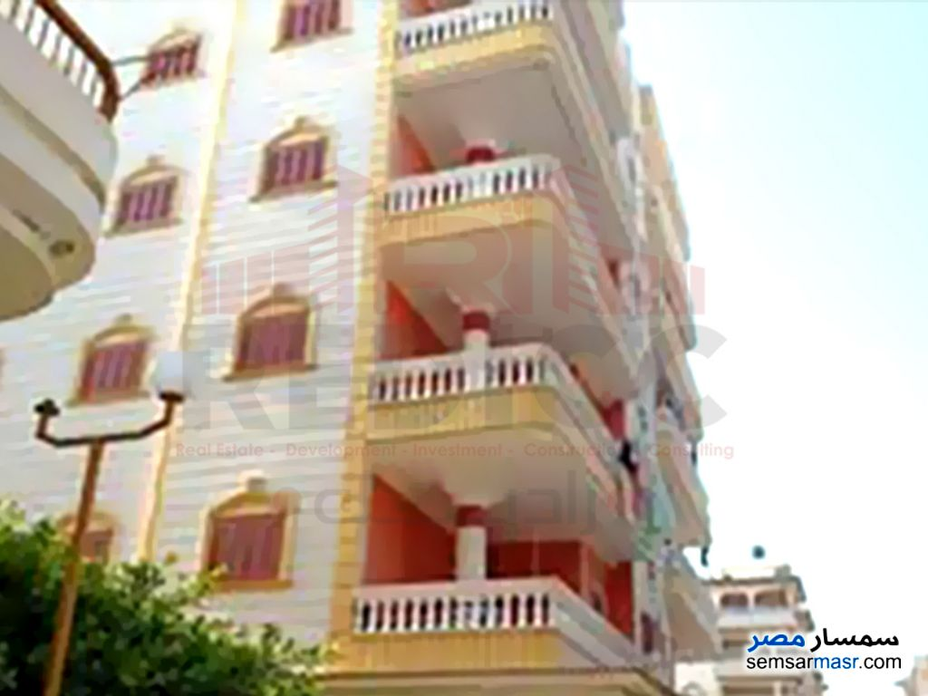 Photo 10 - Apartment 3 bedrooms 1 bath 100 sqm lux For Sale Gamasa Daqahliyah