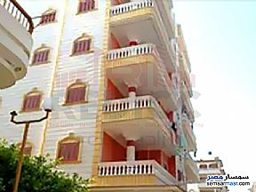 Apartment 3 bedrooms 1 bath 100 sqm lux For Sale Gamasa Daqahliyah - 10