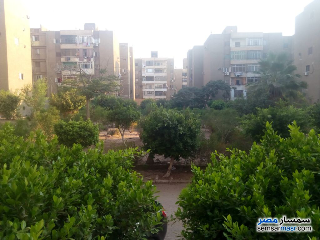 Photo 4 - Apartment 3 bedrooms 1 bath 120 sqm lux For Sale Nasr City Cairo