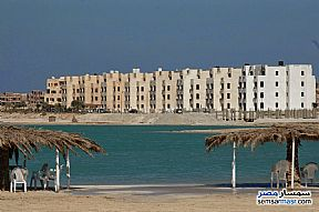 Ad Photo: Apartment 2 bedrooms 1 bath 75 sqm lux in Marsa Matrouh  Matrouh
