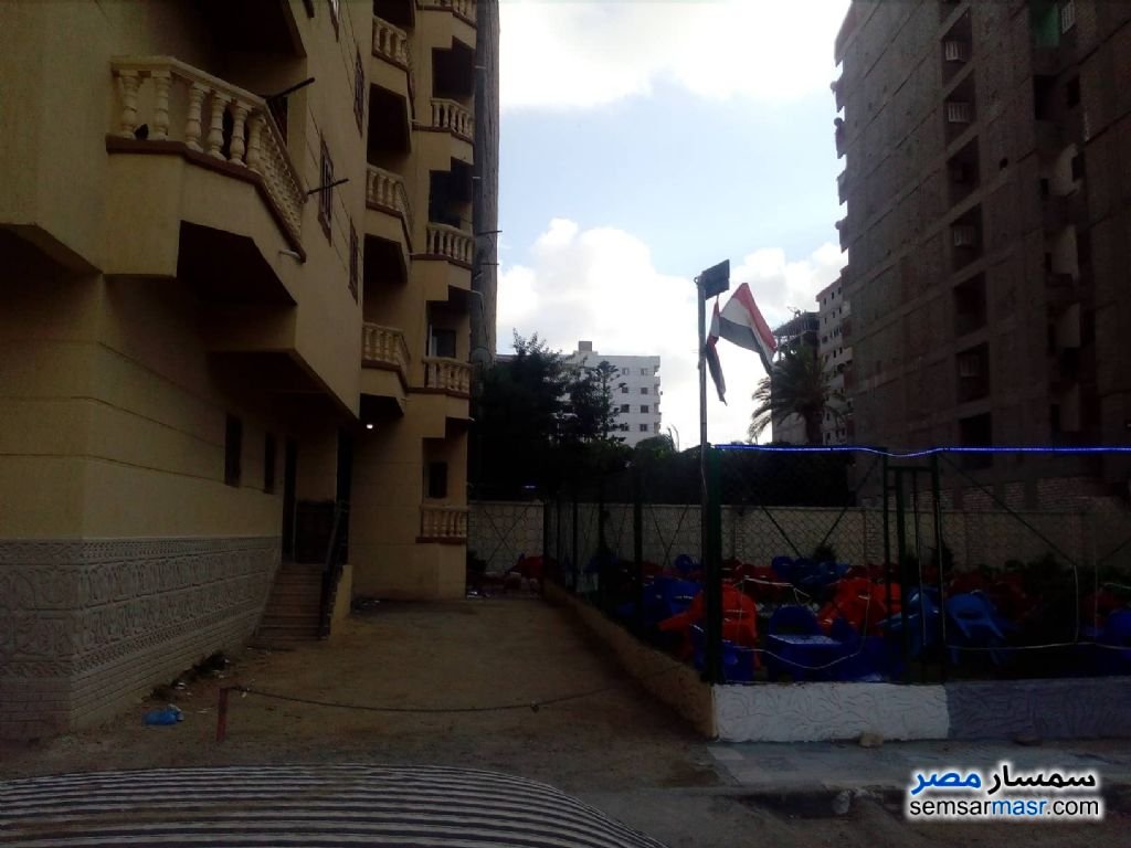 Photo 4 - Apartment 3 bedrooms 1 bath 110 sqm without finish For Sale Agami Alexandira