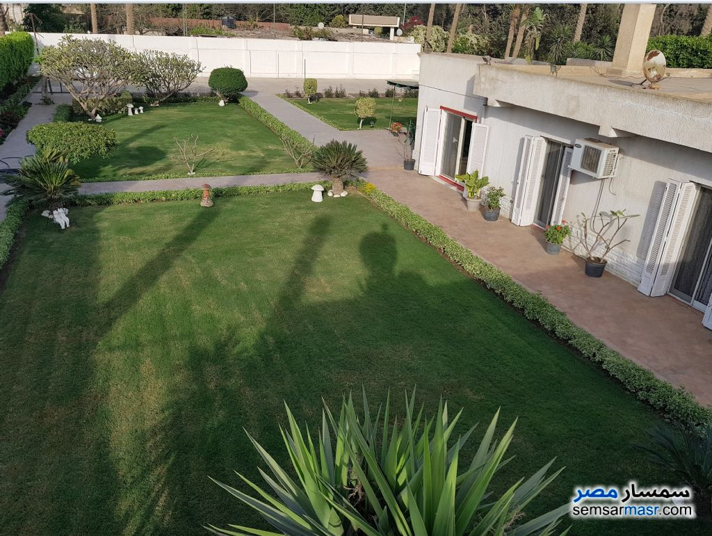 Photo 2 - Land 13 acre For Sale AL Mansoureyah Giza