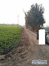 Ad Photo: Farm 8400 sqm in Al Khankah  Qalyubiyah