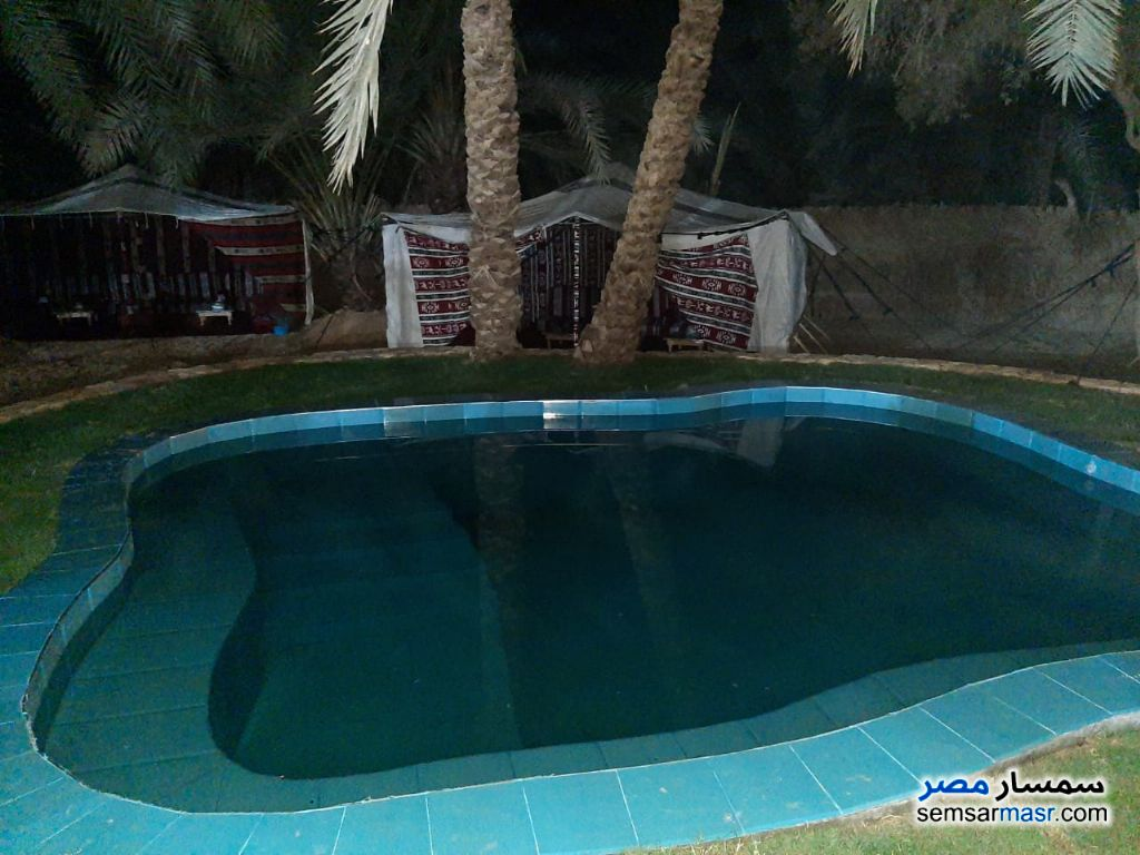 Ad Photo: Service 2 bedrooms 1 bath 3500 sqm extra super lux in Egypt