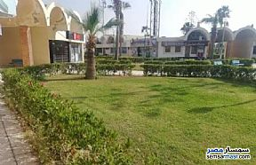 Ad Photo: Commercial 65 sqm in North Coast  Alexandira