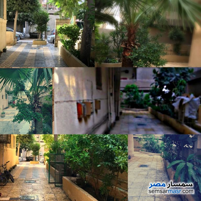 Photo 4 - Apartment 4 bedrooms 1 bath 250 sqm extra super lux For Sale Heliopolis Cairo