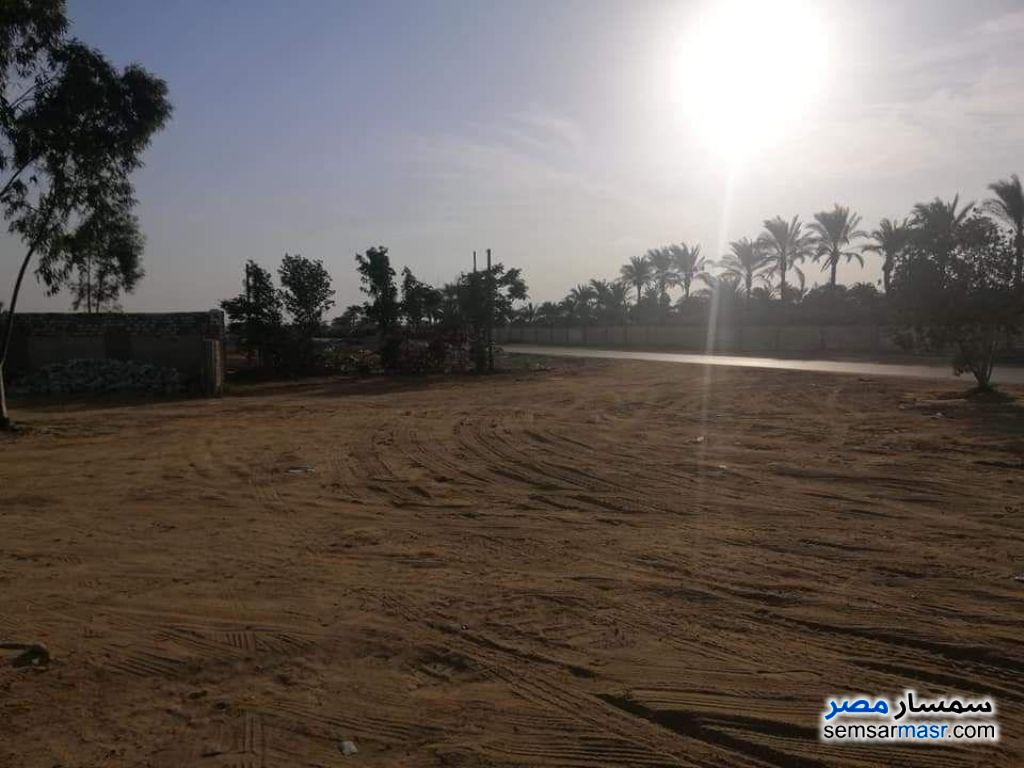 Photo 1 - Land 6 acre For Sale Sphinx City 6th of October