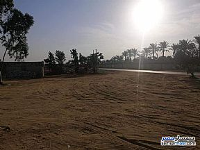 Ad Photo: Land 6 acre in Sphinx City  6th of October