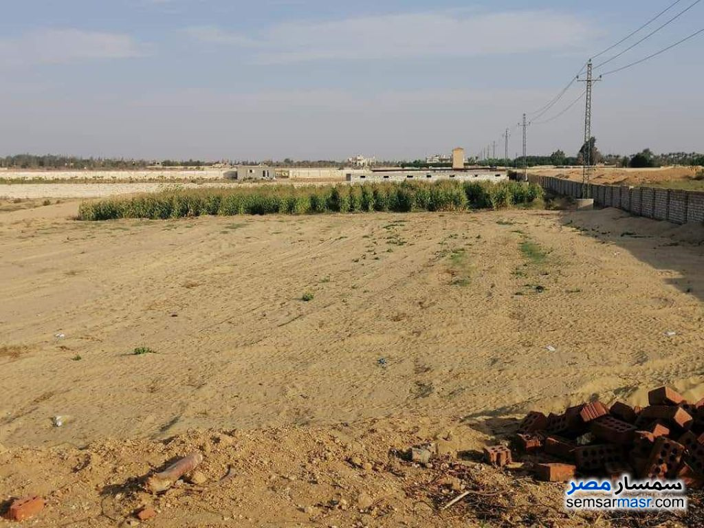 Photo 2 - Land 6 acre For Sale Sphinx City 6th of October