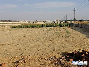 Land 6 acre For Sale Sphinx City 6th of October - 2