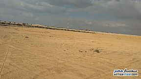 Ad Photo: Farm 10 acre in El Alamein  Matrouh