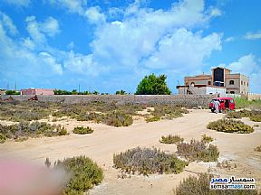 Ad Photo: Land 1000 sqm in North Coast  Alexandira