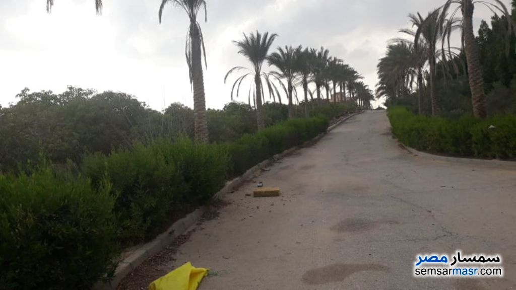 Ad Photo: Farm 8 acre in El Ubour City  Qalyubiyah