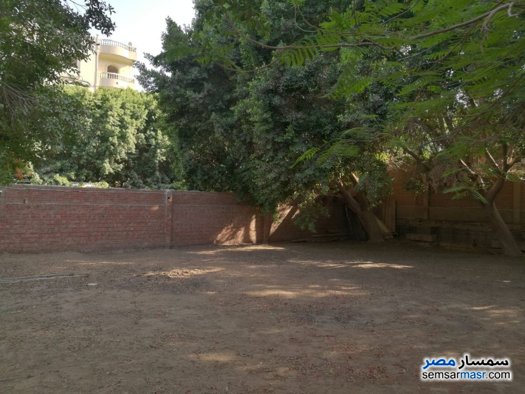Photo 1 - Land 560 sqm For Sale Badrashin Giza