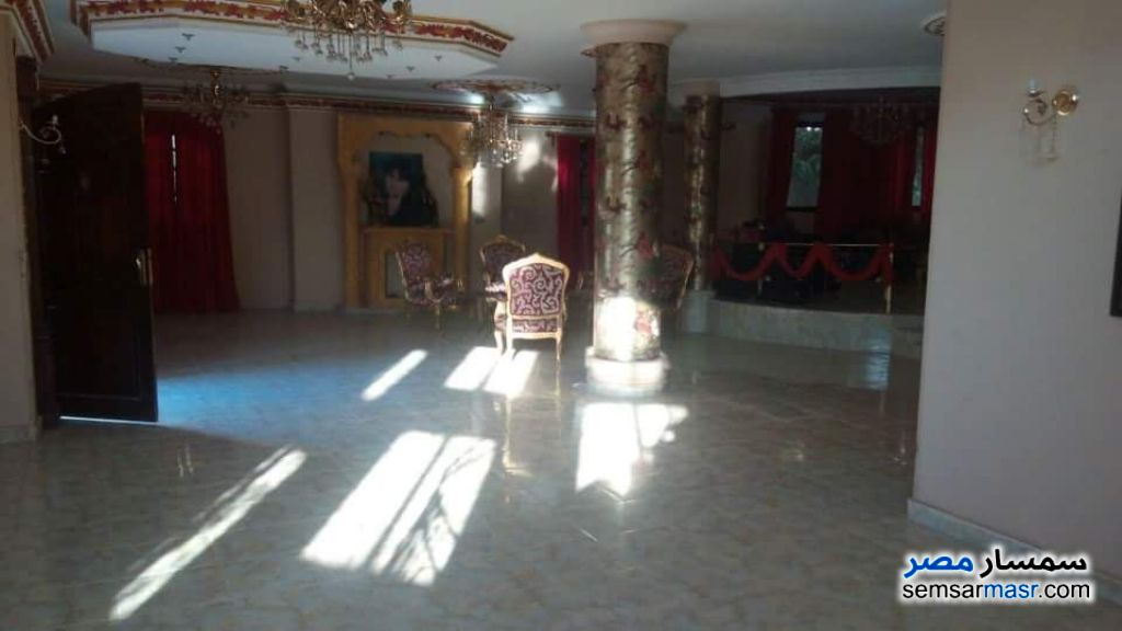 Photo 11 - Villa 4 bedrooms 3 baths 800 sqm super lux For Sale Shorouk City Cairo