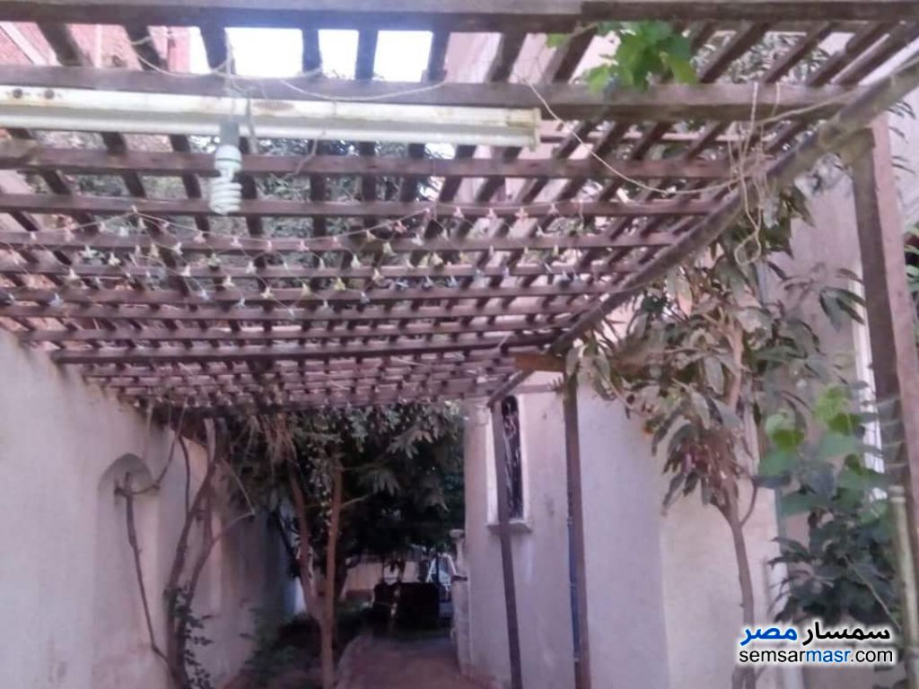 Photo 6 - Villa 4 bedrooms 3 baths 800 sqm super lux For Sale Shorouk City Cairo