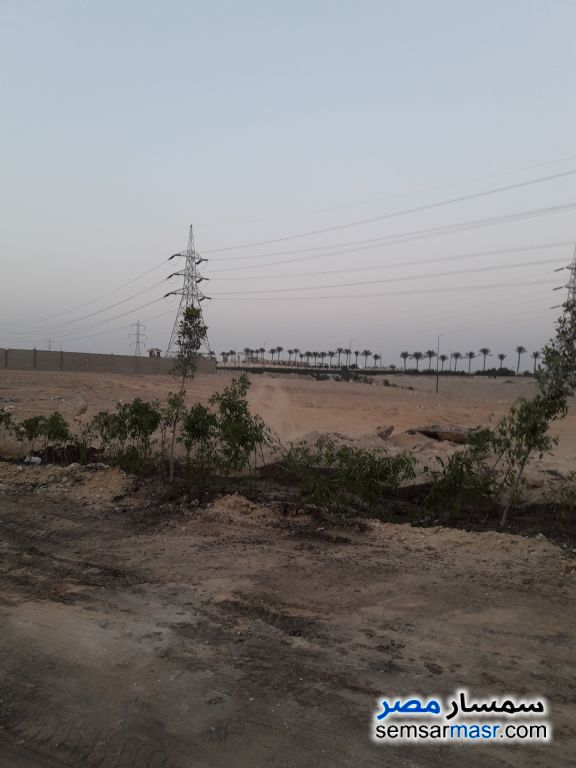 Photo 2 - Land 3,000 sqm For Sale North Extensions 6th of October
