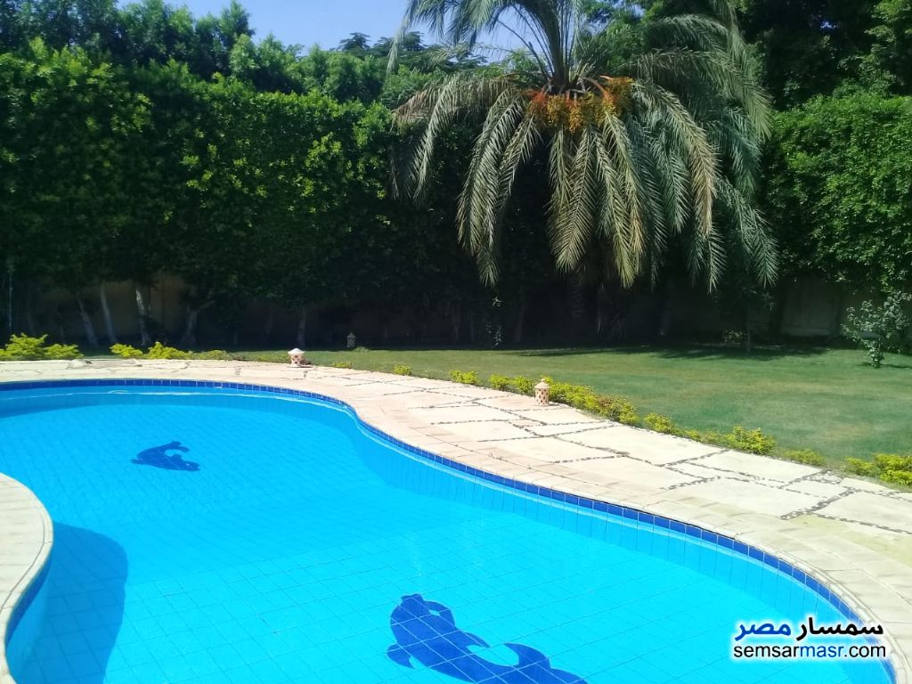 Photo 25 - Villa 3 bedrooms 2 baths 300 sqm super lux For Rent Shorouk City Cairo