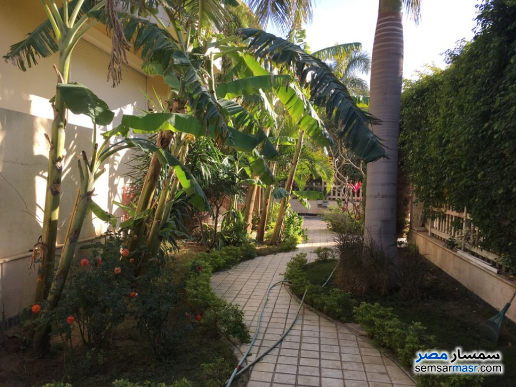 Photo 9 - Villa 12 bedrooms 5 baths 925 sqm extra super lux For Sale Rehab City Cairo