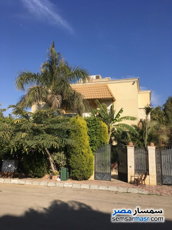 Photo 11 - Villa 12 bedrooms 5 baths 925 sqm extra super lux For Sale Rehab City Cairo